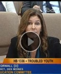 Moving testimony on Orwall's Troubled Youth bill