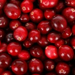 Cranberry harvest is in full swing