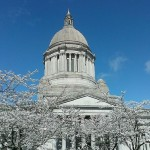 Legislative Update-Special Session Edition