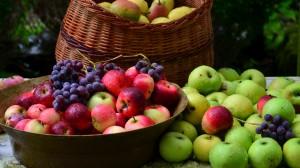 baskets of fruit, apples