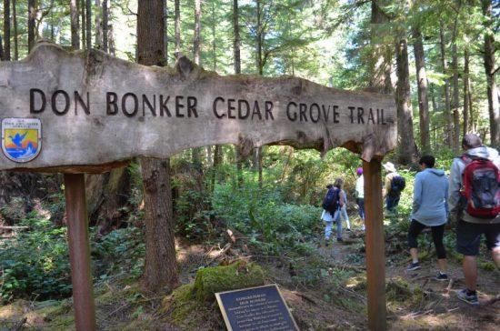 Cedar Grove Trail. Photo courtesy of the Long Beach Peninsula Visitors Bureau.