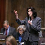 Rep. Christine Kilduff on floor of House