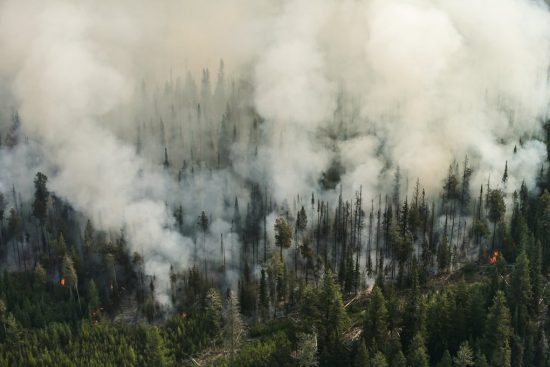 Wildfire spreads through Okanogan County forests the day after three firefighters were killed battling the Twisp River fire in 2015.