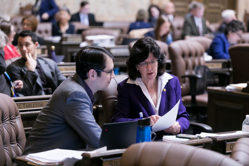 The Washington State House of Representatives convenes for floor debate, March 9th, 2019.