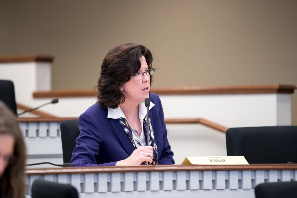Rep. Christine Kilduff in committee