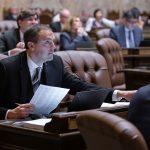 Rep. Riccelli voting during cutoff week