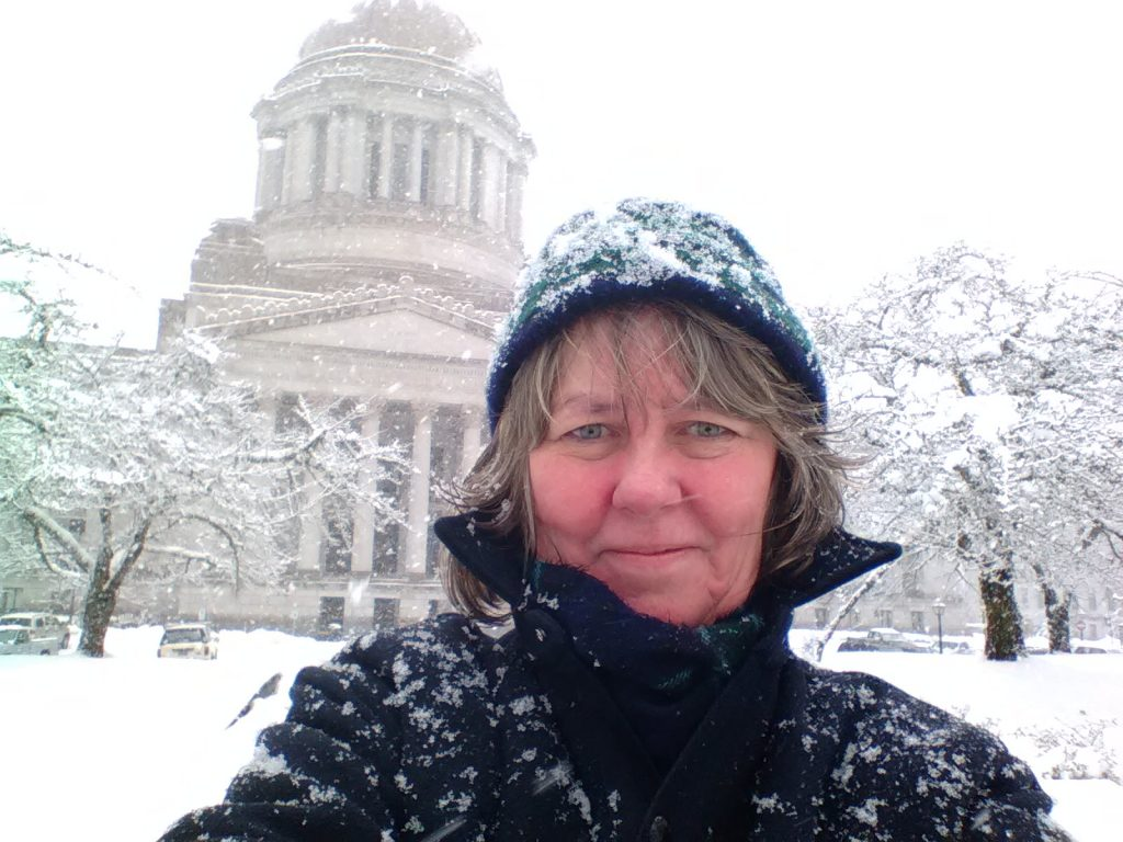 Gael Tarleton on February 11 at the capitol in the snow