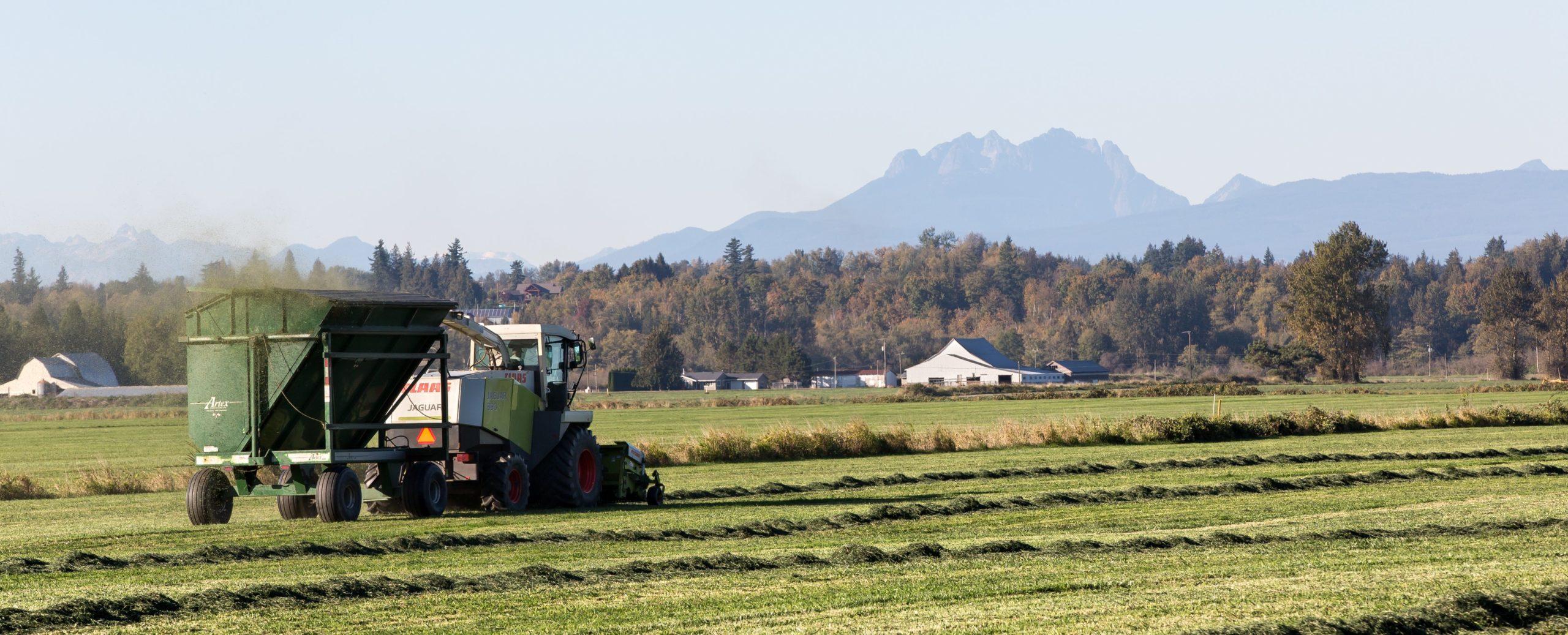 Picture of combine on farmland in 42nd Legislative District. Sumas, WA.